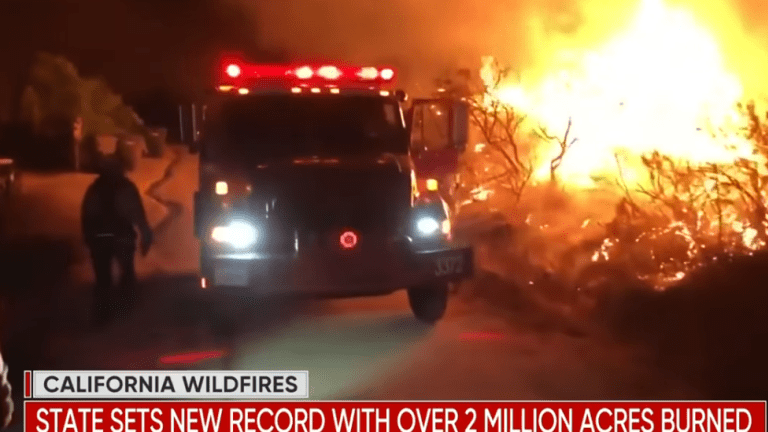 A Record 2 Million Acres Destroyed in California Fires
