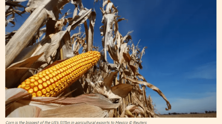 Killing the Trade Golden Goose: Farmers Rattled by Trump's NAFTA Rescinding Plans