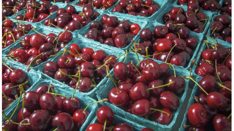 Rotting Cherries, Spoiled Pork, Car Inspections and Angry Politicians