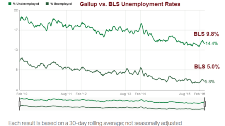 University Professor Asks: How Accurate and at What Cost is BLS Data?