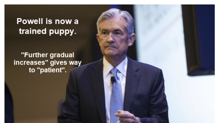 Powell Now a Fully-Trained Puppy Happy to Please Master Market