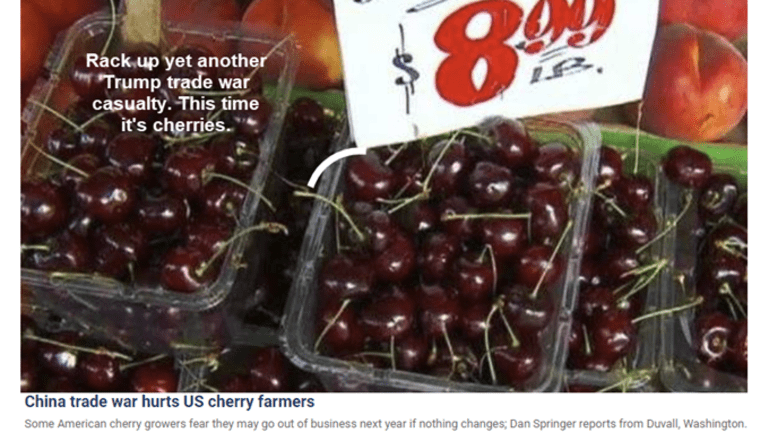 Cherry Business Goes Sour: Yet Another Trump Tariff Debacle, 5th Dimension Req'd