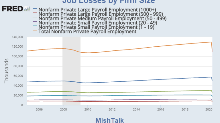 Job Losses by Size of Company: Who Lost the Jobs?