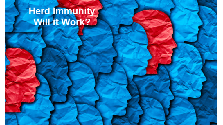 Is Sweden's Herd Immunity Strategy the Best We Can Do?