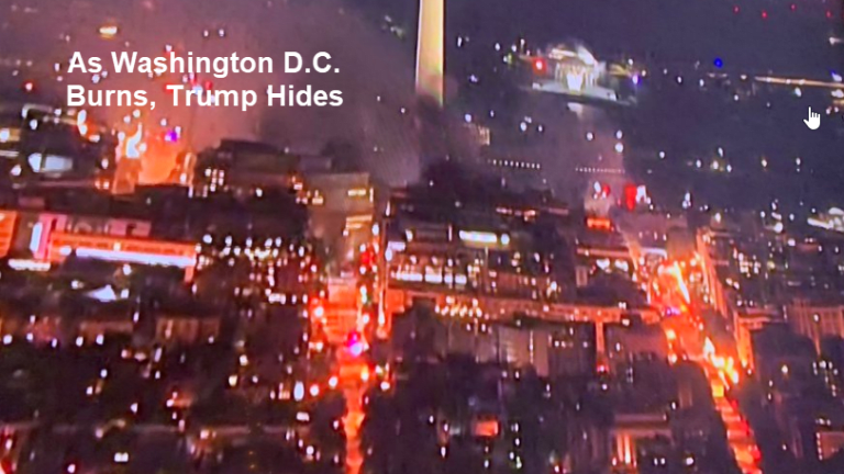 """""""Law and Order"""" President in Hiding as D.C. Burns"""