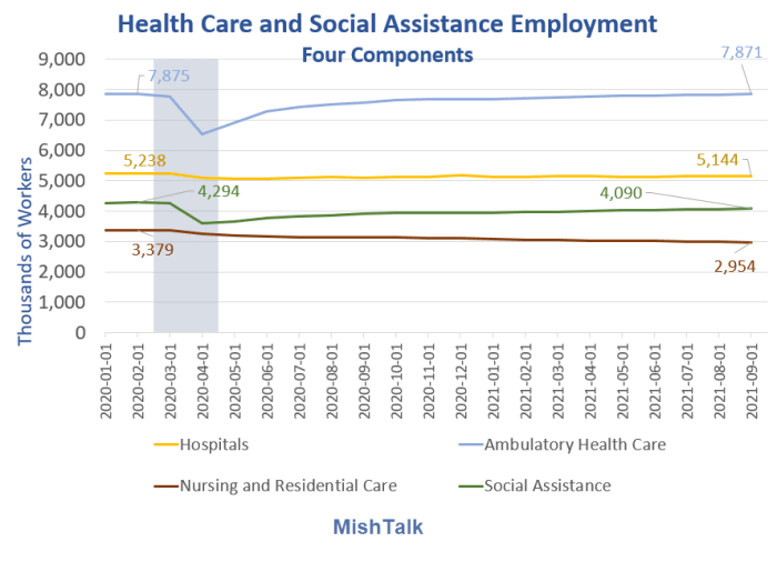 Healthcare and Social Assistance Four Components 2021-09