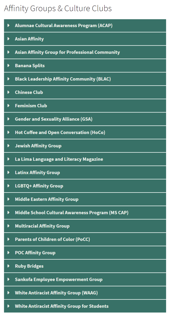 Chapin Affinity Groups and Culture Clubs