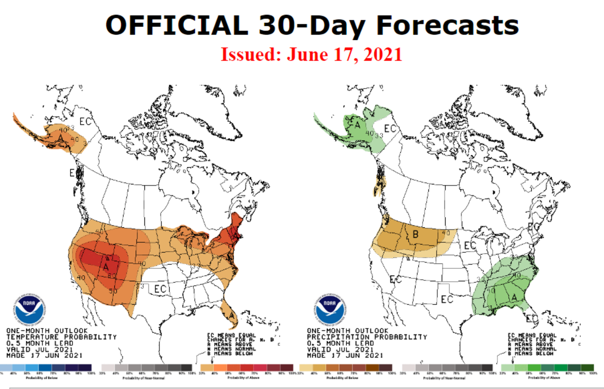Official 30-Day Forecast