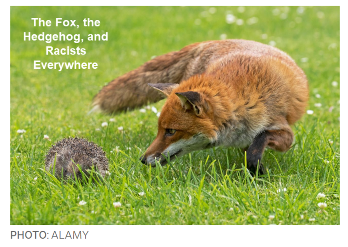 The Fox, the Hedgehog, and Racists Everywhere